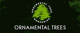 ornamental-trees.co.uk